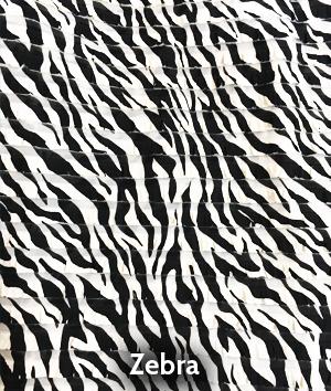 bdrop029-zebra
